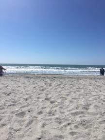 beach-beach
